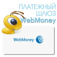 payment-gateways-woocommerce-webmoney